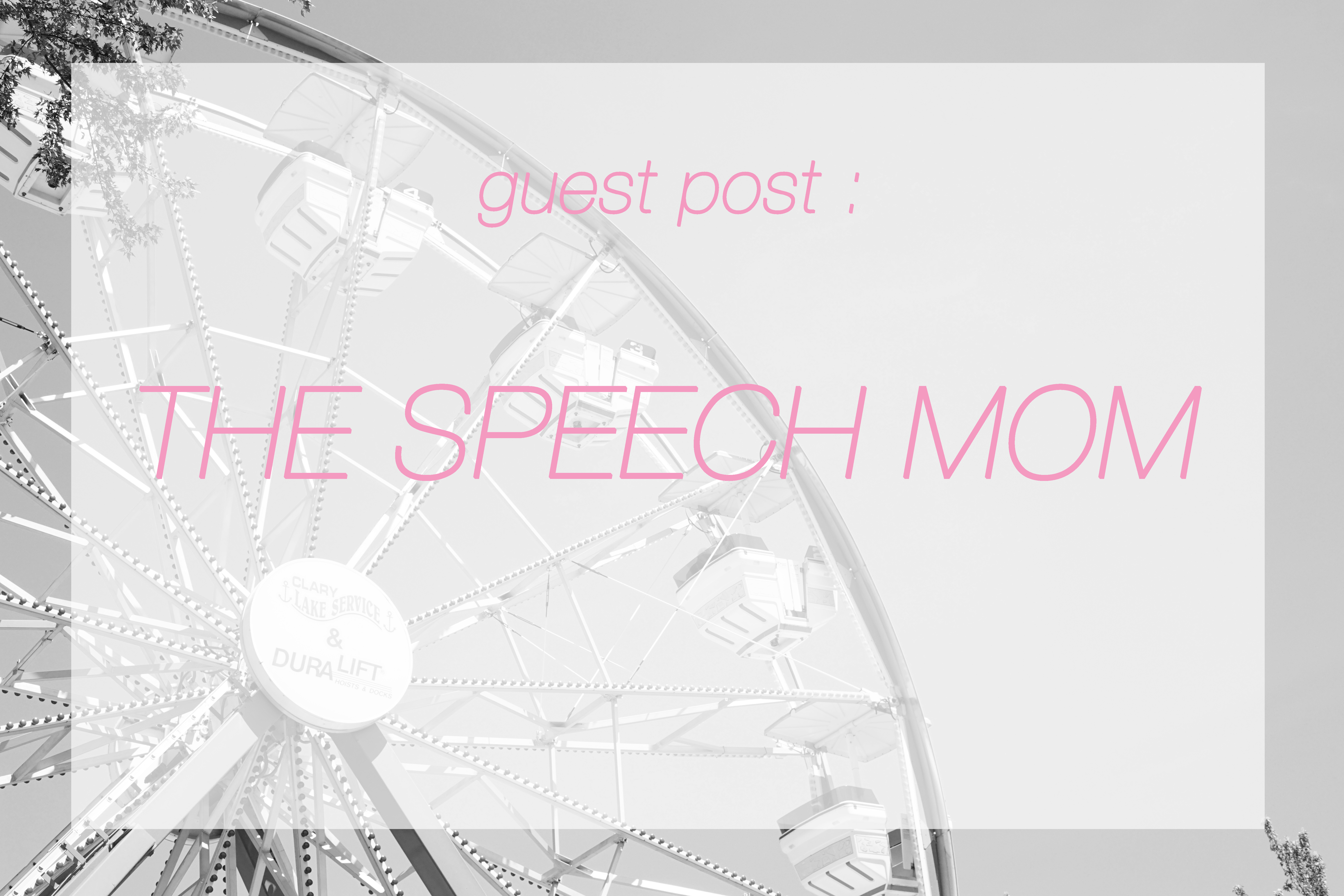 guest blog post - the speech mom- Midwest In Style